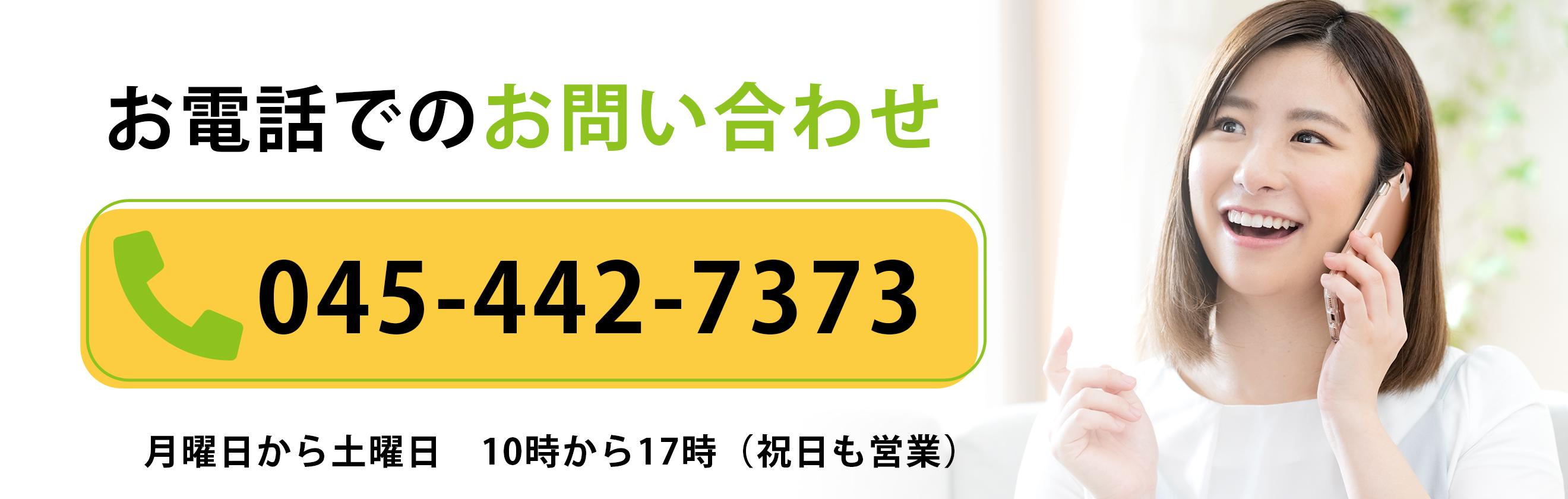 0454427373